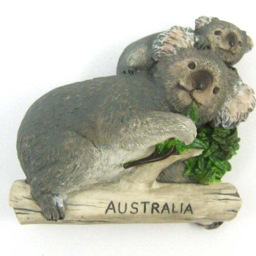 Cute Bear Koala Teddy Bear Australia Animal Collection