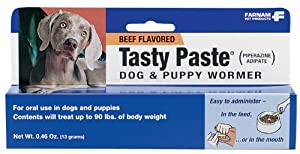 D-Worm Tasty Paste Puppy and Dog Dewormer, 13 g