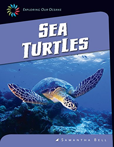 Sea Turtles (21St Century Skills Library: Exploring Our Oceans)