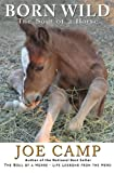 img - for Born Wild - The Soul of a Horse book / textbook / text book