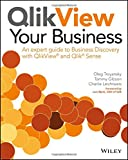 img - for QlikView Your Business: An Expert Guide to Business Discovery with QlikView and Qlik Sense book / textbook / text book