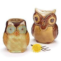 Autumn Owl Salt & Pepper Shaker Set Fall Thankgiving Owls Table Decoration Gift