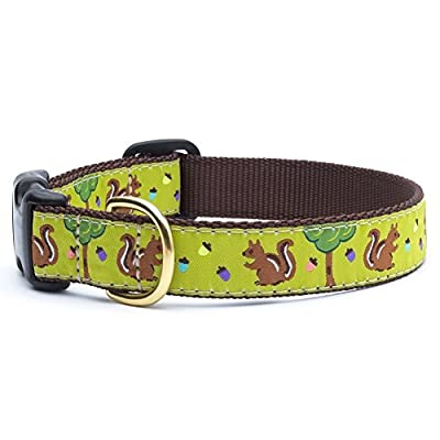 Squirrel Dog Collar