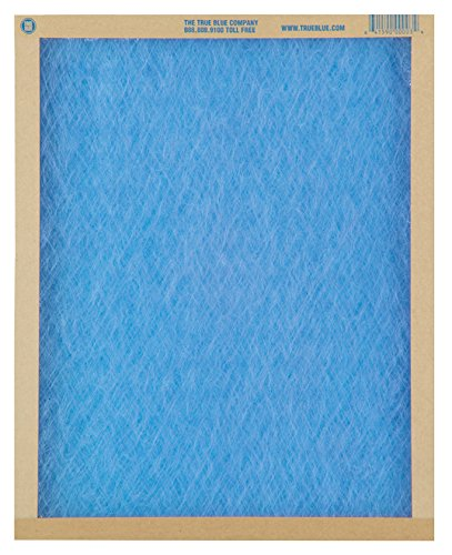 "True Blue 110301 Air Filter, 10"" x 31"" x 1"""