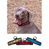 Red Fire Hydrants Illuminated Dog Collar - Large Sizeby PolyBrite