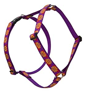 Lupine 1-Inch Flower Box Roman Dog Harness for Medium and Large Dogs, 20 to 32-Inch