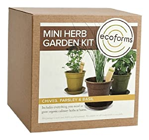 Eco Forms - Mini Herb Garden Kit (Basil-Cilantro-Parsley), 1 kit