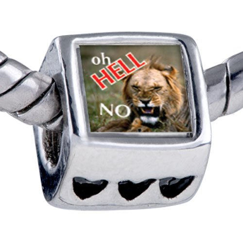 Pugster Oh Hell No Lion Photo Heart Beads Fits Pandora Charm Bracelet