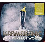"In a Perfect World (Special Edition)von ""Karmakanic"""