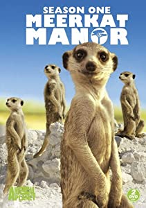 Meerkat Manor: Season One [Import]