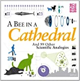 A Bee in a Cathedral: And 99 Other Scientific Analogies (Science Museum)