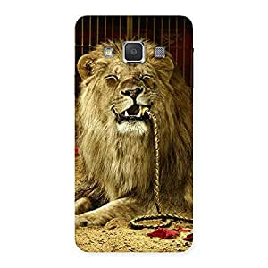 Enticing Dude Lion Multicolor Back Case Cover for Galaxy A3