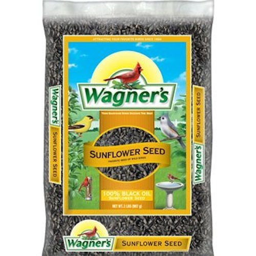 Wagner's 52021 Oil Sunflower Seed, 2-Pound Bag (Bird Food Shelled Sunflower Seeds compare prices)