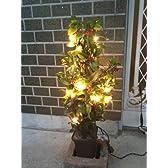ガーデニングライト ベイリーフツリー 高さ45cm 【防雨仕様】 間接照明 室内照明