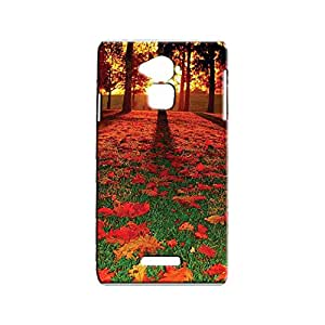 G-STAR Designer Printed Back case cover for Coolpad Note 3 - G2689