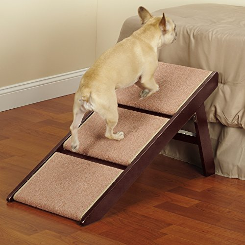 Steps To Help Dog Get On Bed