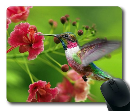 Sakuraelieechyan Hummingbird Flying To Flowers Rectangle Mouse Pad front-569696