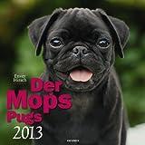 Der Mops 2013