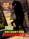 Minecraft: True Encounters with Ender…
