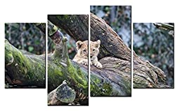 Canval prit painting Animal Wall Art a Lovely Lion Baby Lying on the Old Trunk 4 Pieces Picture on Canvas