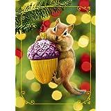 Avanti Plus Christmas Cards, Acorn and Chipmunk, 10 Count ~ Avanti Press
