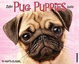Pug Puppies 2015 Wall Calendar
