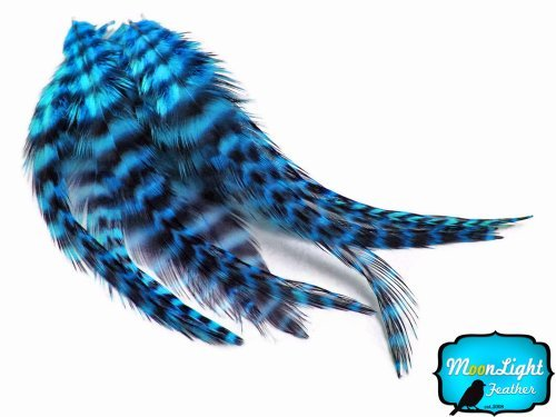 Hair Feathers ; 1 Dozen - Short Turquoise Blue Grizzly Rooster Hair Extension Feathers by Moonlight Feather