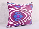 Ikat Pillow, Hand Woven Ikat Pillow Cover, Ikat throw pillows, Designer pillows, Ikat Pillows, Decorative pillows, Accent pillows - a402-1ab1