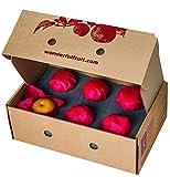 Fresh Asian Pears - Small Gift Box, direct from Pennsylvania farm