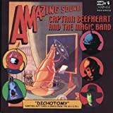 Dichotomy by CAPTAIN BEEFHEART (2003-11-17)