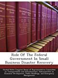 img - for Role Of The Federal Government In Small Business Disaster Recovery book / textbook / text book
