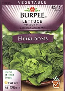 Burpee 58005 Heirloom Lettuce Vintage Mix Seed Packet