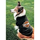 Harley Bar and Shield Dog T-Shirt Medium