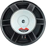 """Seismic Audio - 18"""" Raw Subwoofer/Woofer/Speaker - PA DJ Pro Audio Replacement"""