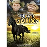 The Adventures of the Black Stallion: The Complete Third Season