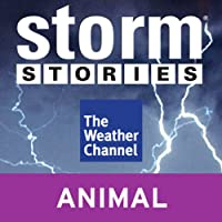 Storm Stories: Hallem, NE Tornado (       UNABRIDGED) by The Weather Channel Narrated by Jim Cantore