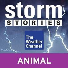 Storm Stories: Hallem, NE Tornado (       UNABRIDGED)  Narrated by Jim Cantore