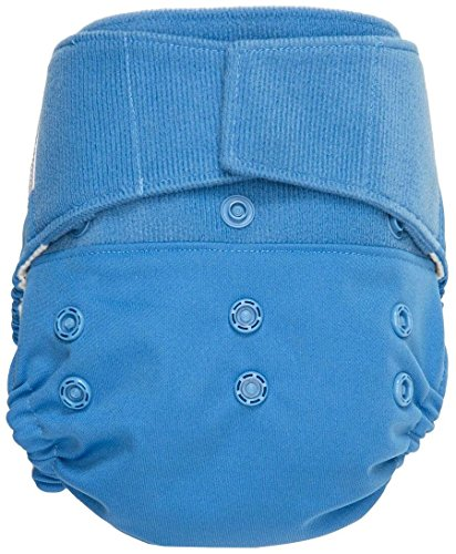 GroVia Hybrid Cloth Diaper- Hook and Loop - Topaz - One Size - Hook and Loop
