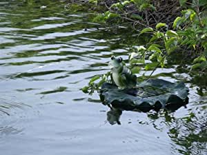Floating Frog Spitter Solar Pond Fountain with Battery Pack