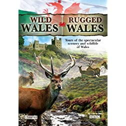 Wild Wales & Rugged Wales