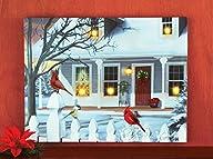 Led Fiber Optics Christmas Cardinals…