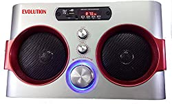 Evolution Kart 7 USB MP3 AUX FM PLAYER (Silver)