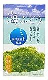海洋深層水使用 沖縄県産 海ぶどう 60g×3箱 ランキングお取り寄せ