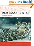 Demyansk 1942-43: The frozen fortress...