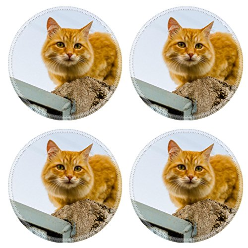 msd-round-coasters-red-cat-on-a-fence-image-34212469-by-msd-customized-tablemats-stain-resistance-co
