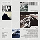 Presenting the Problem by RIBOZYME (2012-02-14)