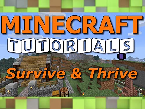 Clip: Survive & Thrive Minecraft Tutorials By Paul Soares