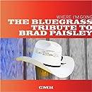 Where Im Going: Bluegrass Trib Brad Paisley