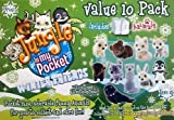 Jungle In My Pocket Value Pack Winter Friends