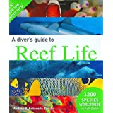 A Diver's Guide to Reef Lifeby Andrea Ferrari